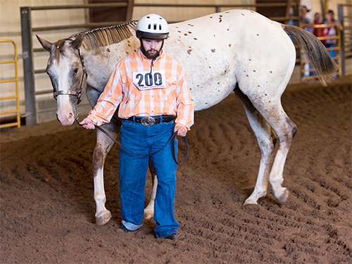 A male Special Olympics Minnesota equestrian athlete wearing a helmet leads a brown and white horse